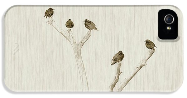 Treetop Starlings IPhone 5 Case by Benanne Stiens