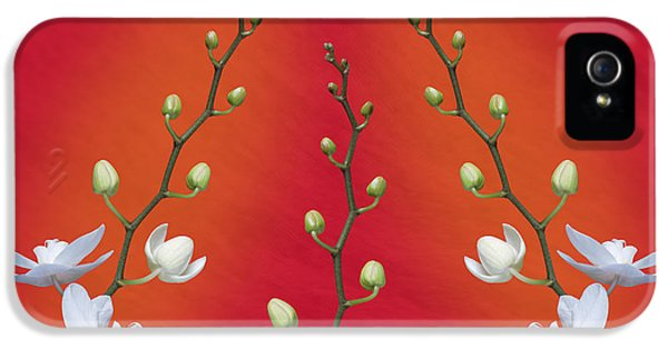 Trifecta Of Orchids IPhone 5 Case by Tom Mc Nemar