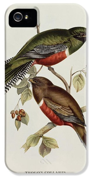 Lovebird iPhone 5 Case - Trogon Collaris by John Gould