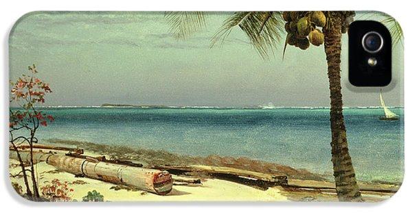 Tropical Coast IPhone 5 Case