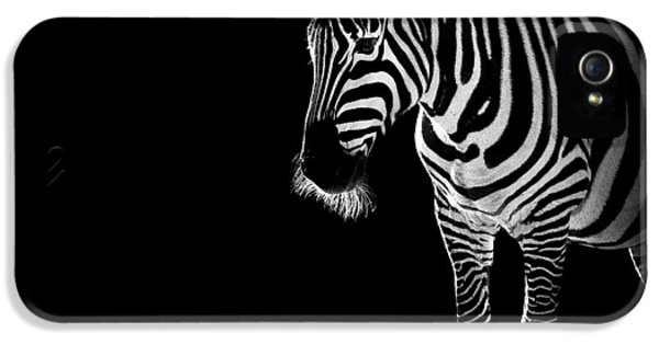 Troy IPhone 5 Case by Paul Neville
