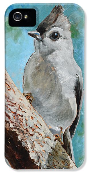 Titmouse iPhone 5 Case - Tufted Titmouse #1 by Amber Foote