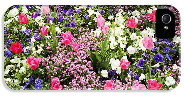 Tulips And Other Colorful Flowers In Spring IPhone 5 Case by Matthias Hauser