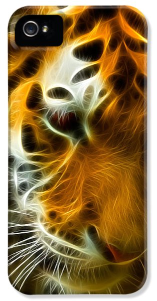Clemson iPhone 5 Case - Turbulent Tiger by Ricky Barnard