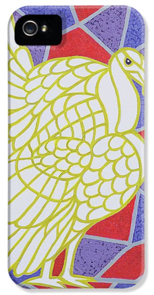 Turkey On Stained Glass IPhone 5 Case