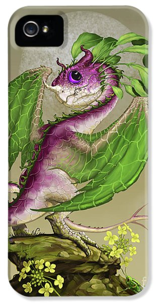 Cricket iPhone 5 Case - Turnip Dragon by Stanley Morrison