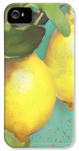 Tuscan Lemon Tree - Citrus Limonum Damask IPhone 5 Case by Audrey Jeanne Roberts