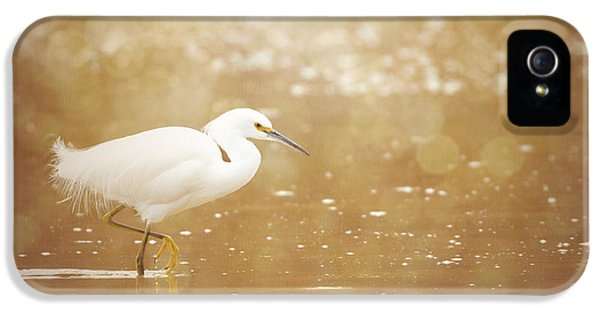 Twinkling - Snowy Egret IPhone 5 Case by Beve Brown-Clark Photography