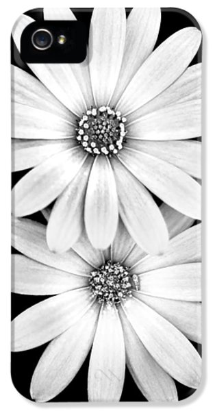Two Flowers IPhone 5 Case by Az Jackson