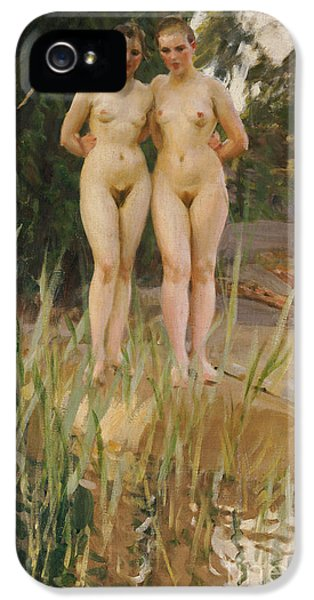 Two Friends  IPhone 5 Case by Anders Leonard Zorn