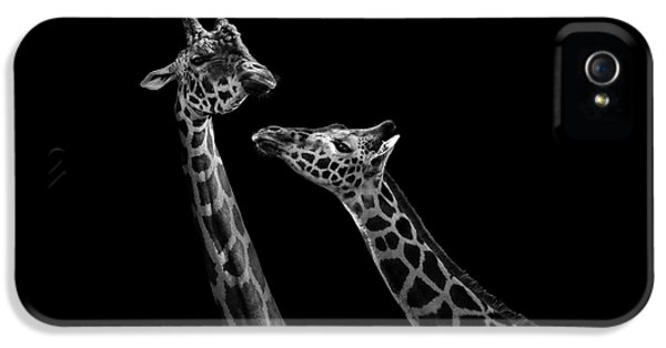 Two Giraffes In Black And White IPhone 5 Case by Lukas Holas