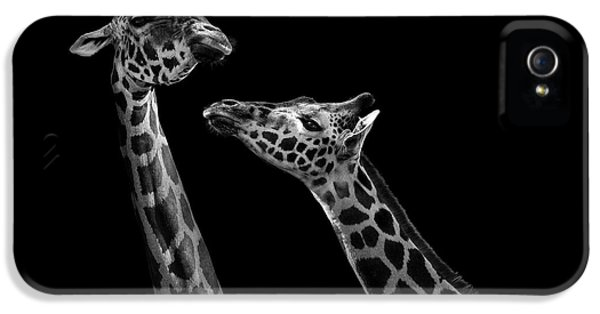 Two Giraffes In Black And White IPhone 5 Case