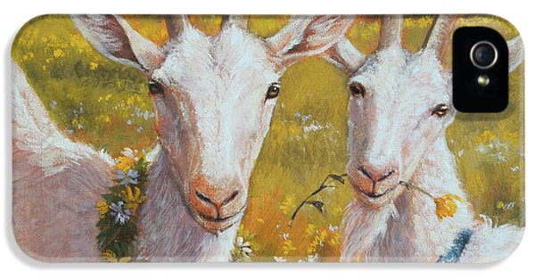 Two Goats Of Summer IPhone 5 Case by Tracie Thompson