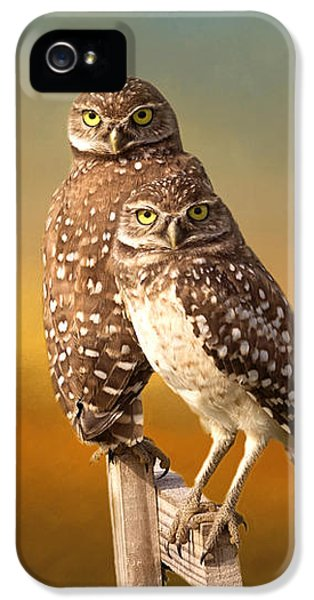 Owl iPhone 5 Case - Two Of Us by Kim Hojnacki