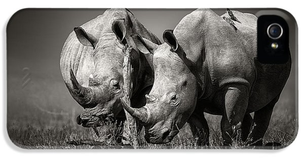 Two Rhinoceros With Birds In Bw IPhone 5 Case
