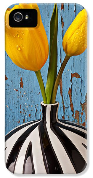 Two Yellow Tulips IPhone 5 Case by Garry Gay