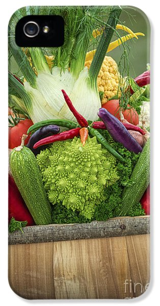 Veg Trug IPhone 5 Case