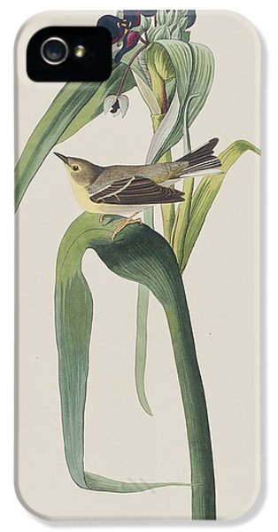 Vigor's Warbler IPhone 5 Case by John James Audubon