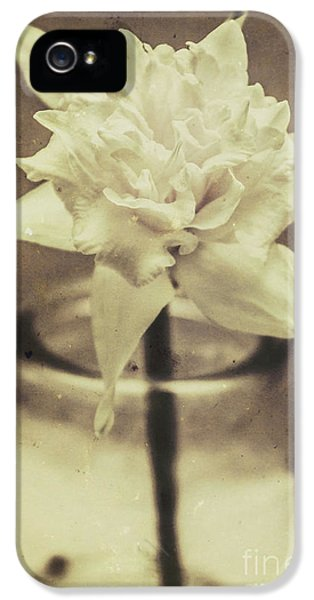 Vintage Floral Still Life Of A Pure White Bloom IPhone 5 Case