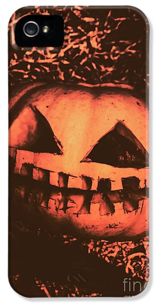 Vintage Horror Pumpkin Head IPhone 5 Case by Jorgo Photography - Wall Art Gallery