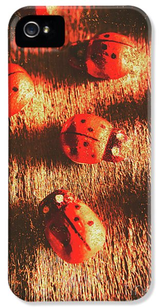 Vintage Wooden Ladybugs IPhone 5 Case