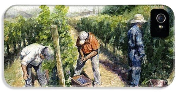 Vineyard Watercolor IPhone 5 Case by Olga Shvartsur
