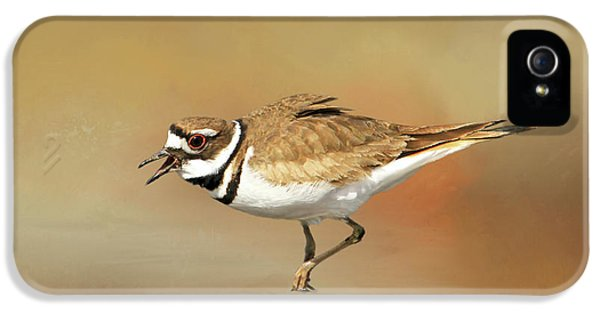 Wading Killdeer IPhone 5 Case by Donna Kennedy