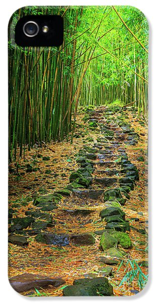 Waimoku Bamboo Forest #2 IPhone 5 Case