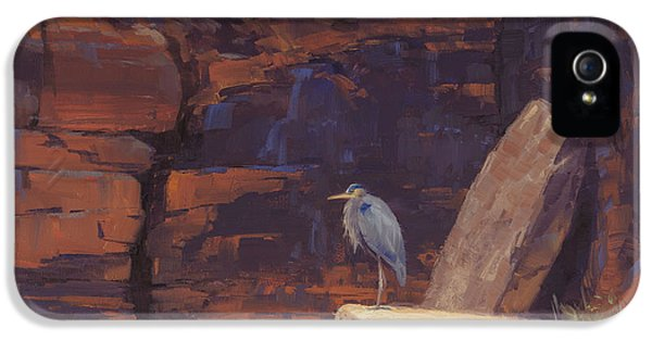 Heron iPhone 5 Case - Waiting by Cody DeLong