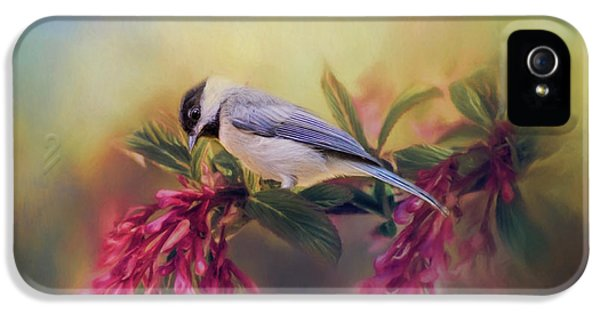 Watching Flowers Bloom Bird Art IPhone 5 Case by Jai Johnson