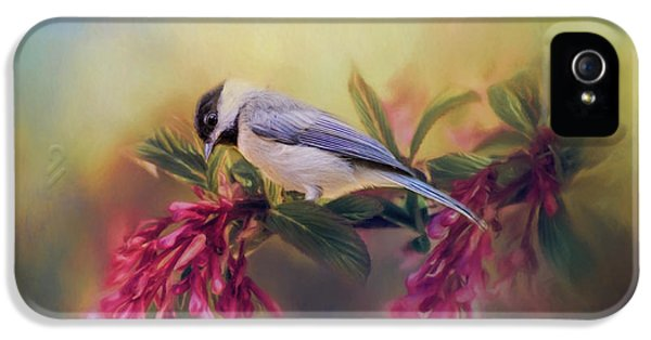 Watching Flowers Bloom Bird Art IPhone 5 / 5s Case by Jai Johnson