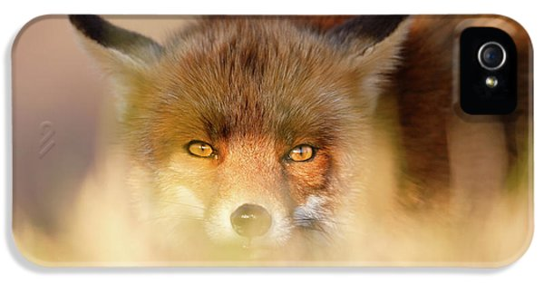 Watching The Watcher - Hunting Red Fox IPhone 5 Case