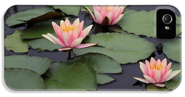 IPhone 5 Case featuring the photograph Water Lilies by Jessica Jenney