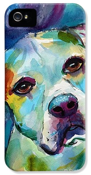 Watercolor American Bulldog Painting By IPhone 5 Case