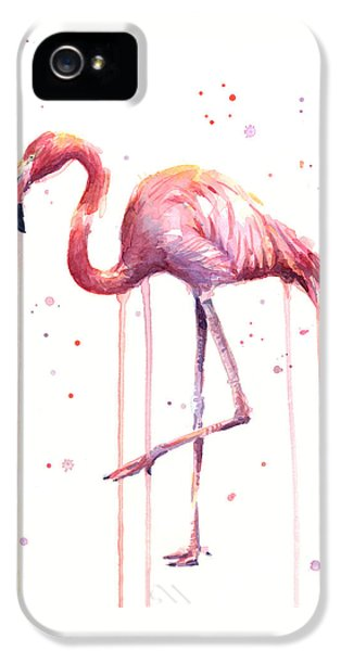 Watercolor Flamingo IPhone 5 / 5s Case by Olga Shvartsur