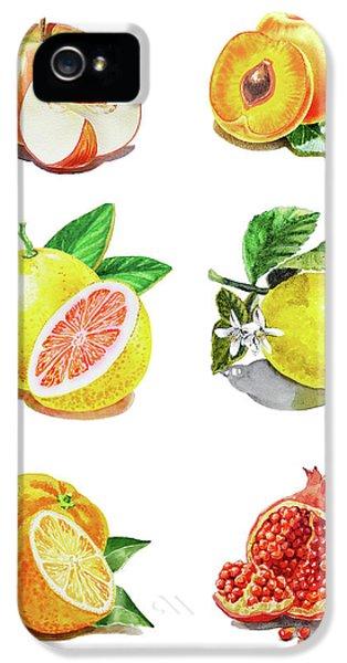 Grapefruit iPhone 5 Case - Watercolor Food Illustration Fruits by Irina Sztukowski