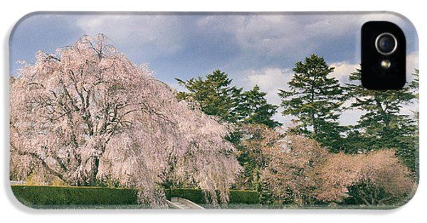 IPhone 5 Case featuring the photograph Weeping Cherry In Bloom by Jessica Jenney