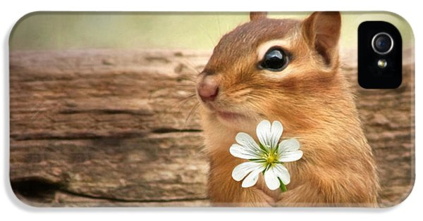 Welcome Spring IPhone 5 Case by Lori Deiter