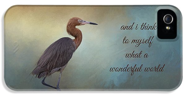 What A Wonderful World IPhone 5 Case
