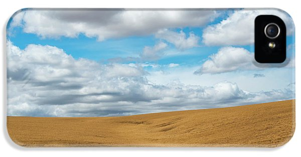 Wheat And Fleece IPhone 5 Case by Mike Dawson