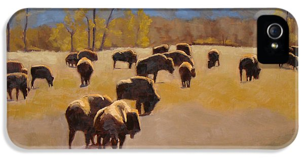 Where The Buffalo Roam IPhone 5 Case by Tate Hamilton