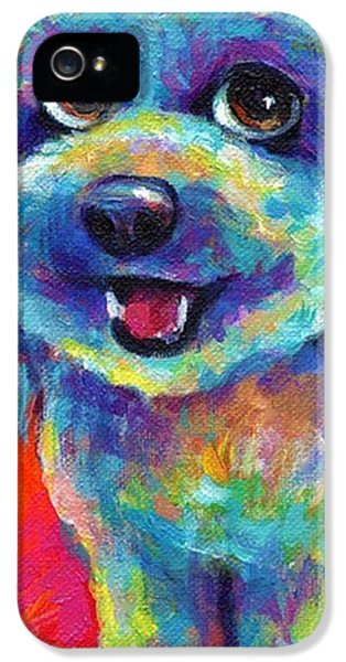 Whimsical Labradoodle Painting By IPhone 5 Case