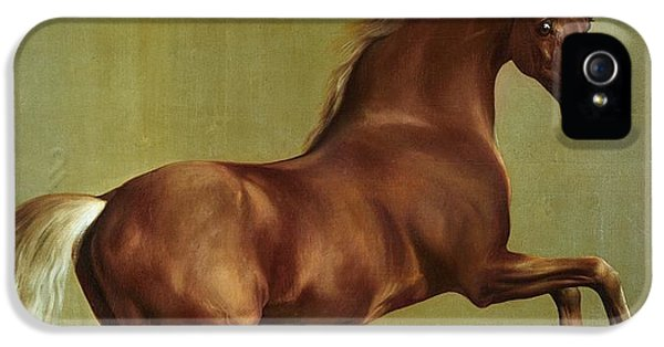 Horse iPhone 5 Case - Whistlejacket by George Stubbs