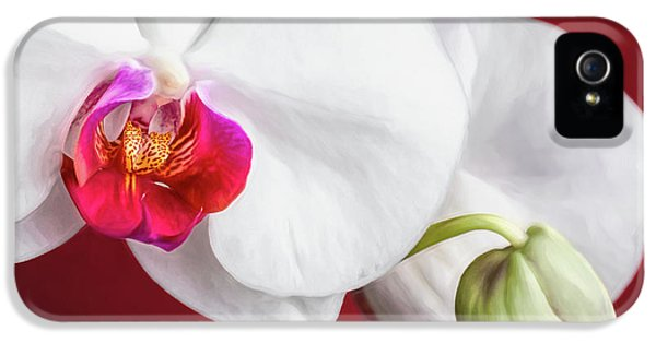 Orchid iPhone 5 Case - White And Red Orchids by Tom Mc Nemar