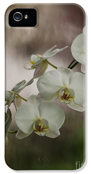 White Of The Evening IPhone 5 / 5s Case by Mike Reid