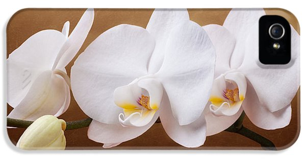 White Orchid Flowers And Bud IPhone 5 / 5s Case by Tom Mc Nemar