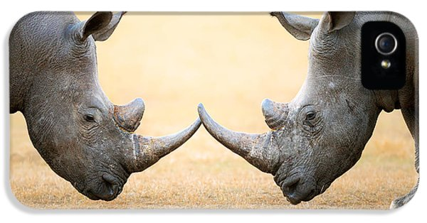 White Rhinoceros  Head To Head IPhone 5 Case by Johan Swanepoel