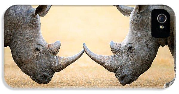White Rhinoceros  Head To Head IPhone 5 Case by Johan Swanepoel