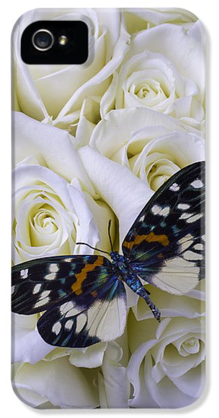 White Roses With Colorful Butterfly IPhone 5 Case by Garry Gay