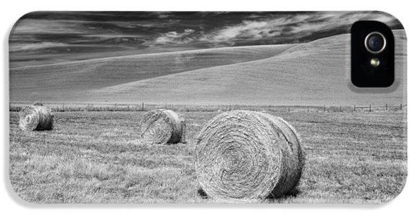 Whitmann County Work IPhone 5 Case by Jon Glaser